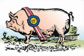 Congressional Pig Book